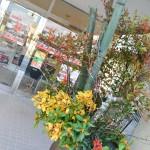 photo_20141231_144703_0032